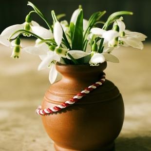 Florile Lui Martisor
