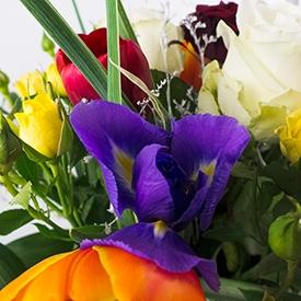 Festivalul Primaverii incepe intoteauna cu un buchet de flori